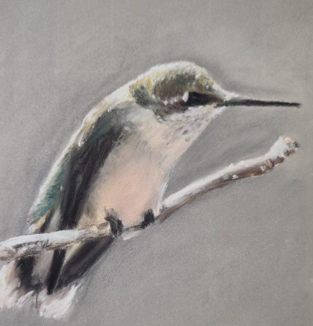 Kolibrie Pastel Schilderij