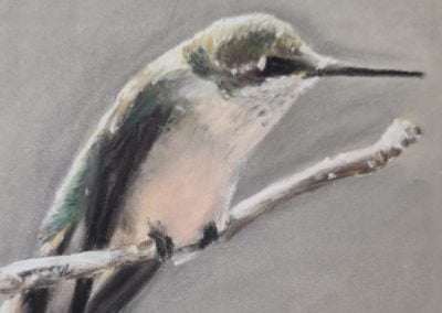 Hummingbird Pastel Painting