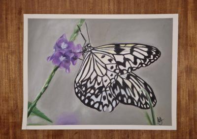 Paper Kite - Pastel