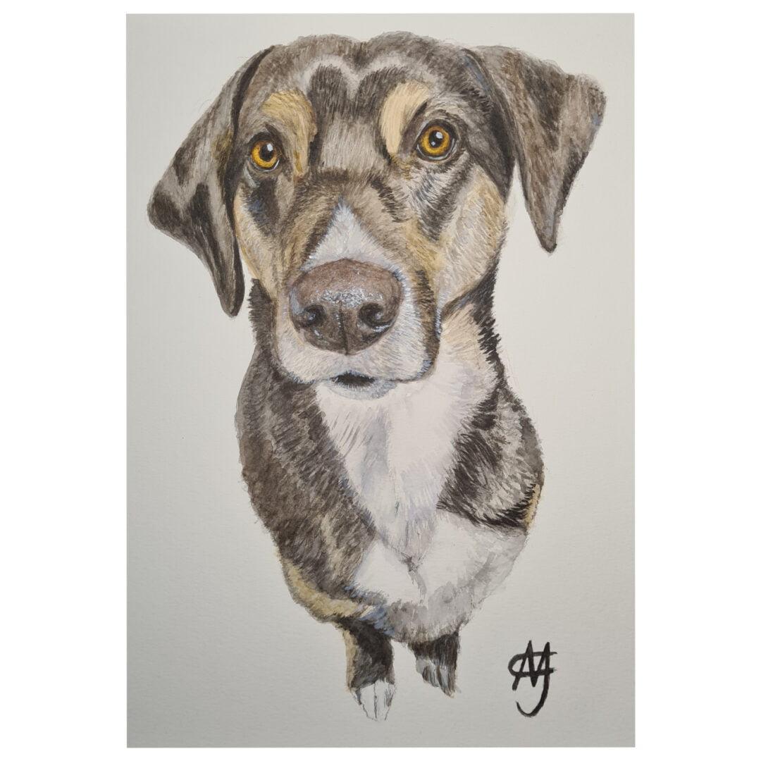 Hond Aquarel Schilderij – PiKazzie