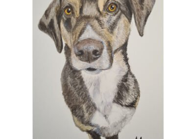Dog in Watercolor – PiKazzie