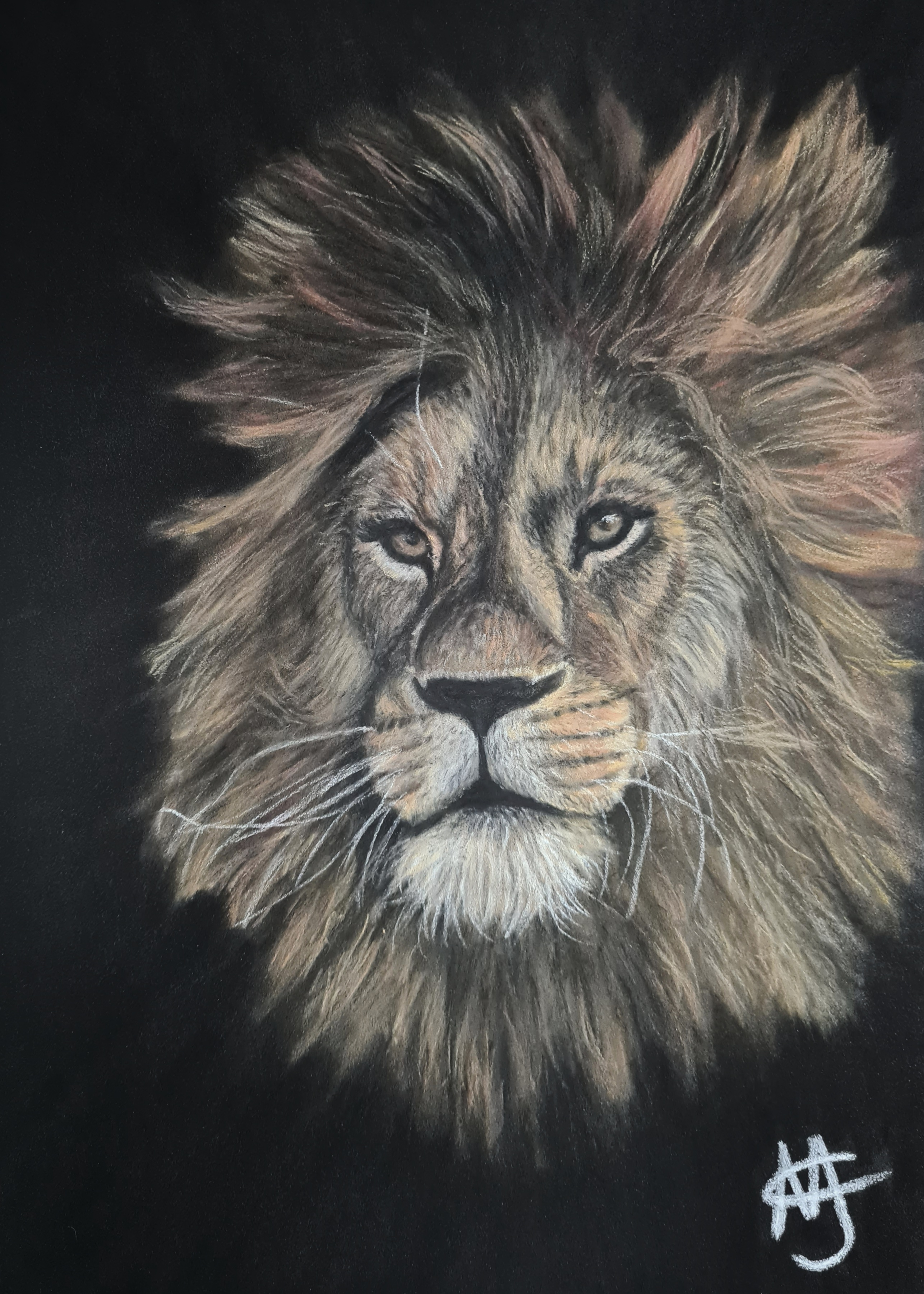 Lion with pastels