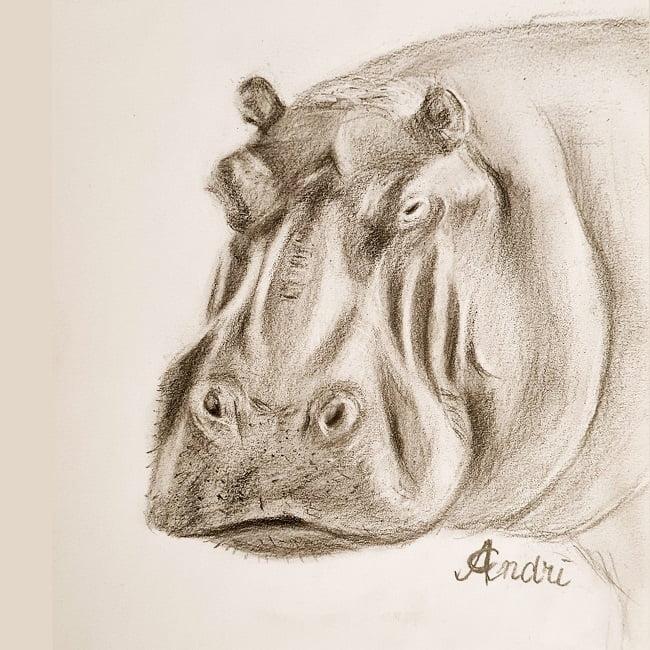 Hippo African Wild Life Art
